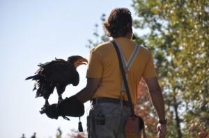 Pierre mit Weißkopfseeadler, Quelle: Anne Witt
