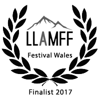 LLAMFF Finalist 2017
